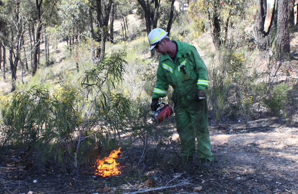 Spring planned burns. Sections of Dry Diggings Track may be smoke affected.